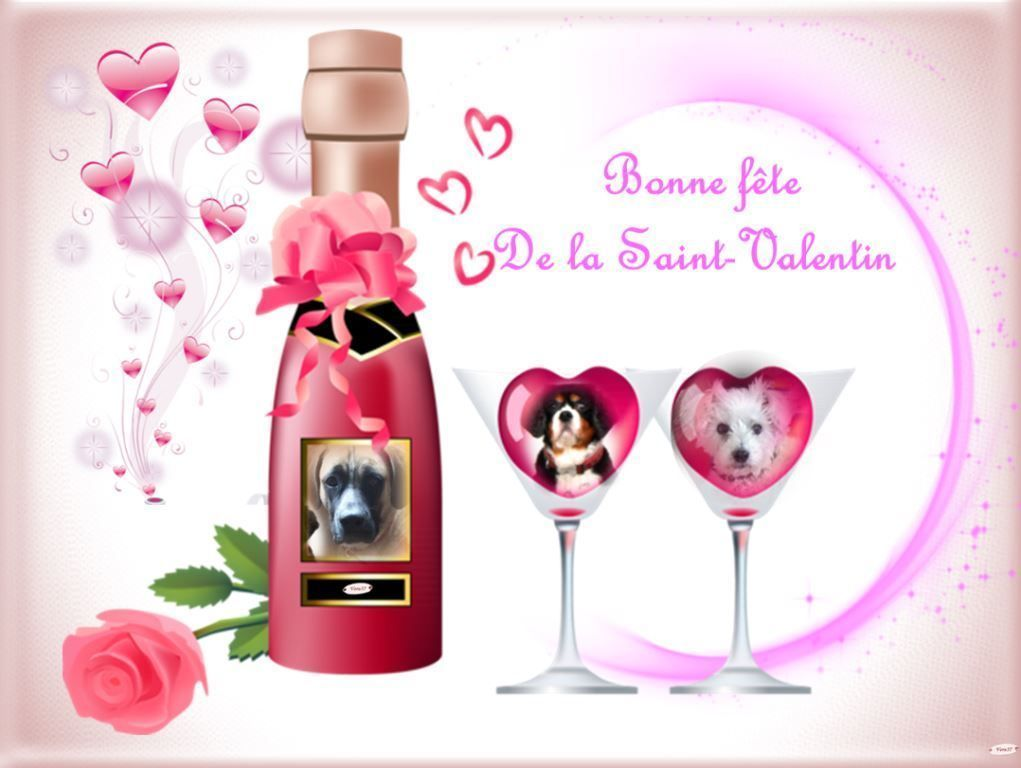 bon week-end de la Saint Valentin