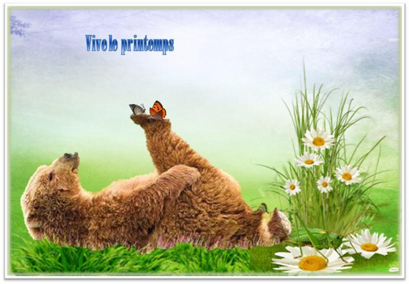 Printemps for Images du printemps gratuites